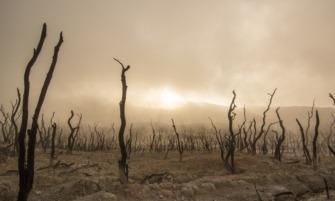 klímaváltozás
