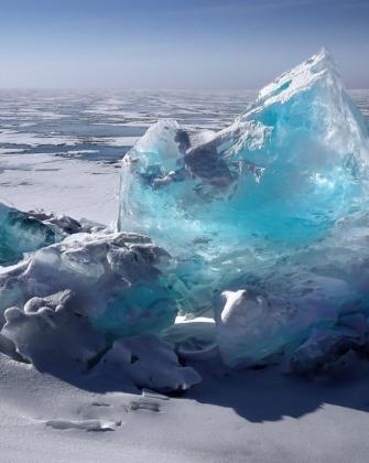 sarkvidék