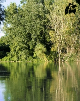 Tisza áradása